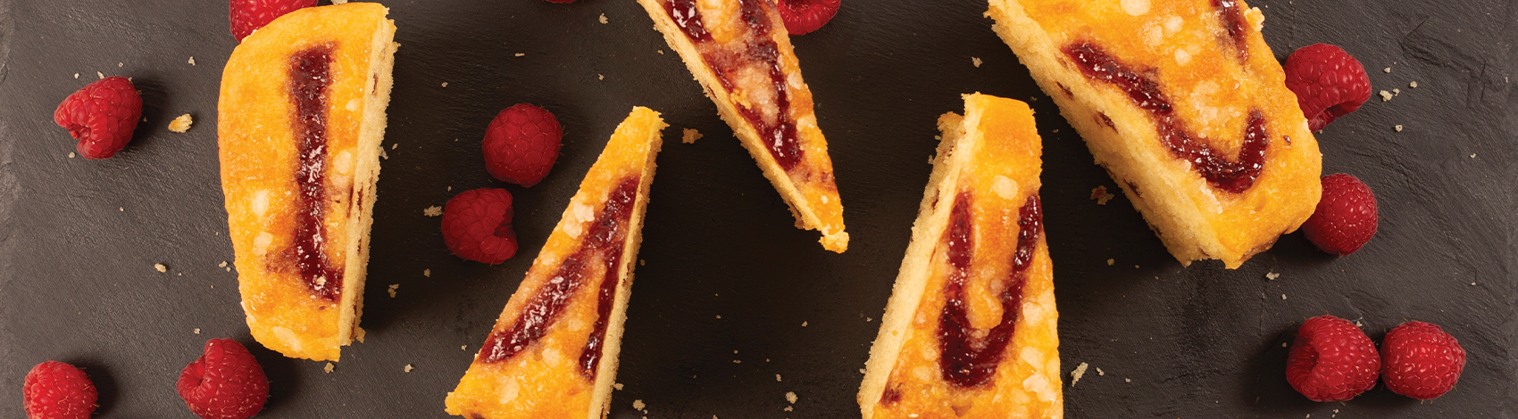 berry fizz cake banner